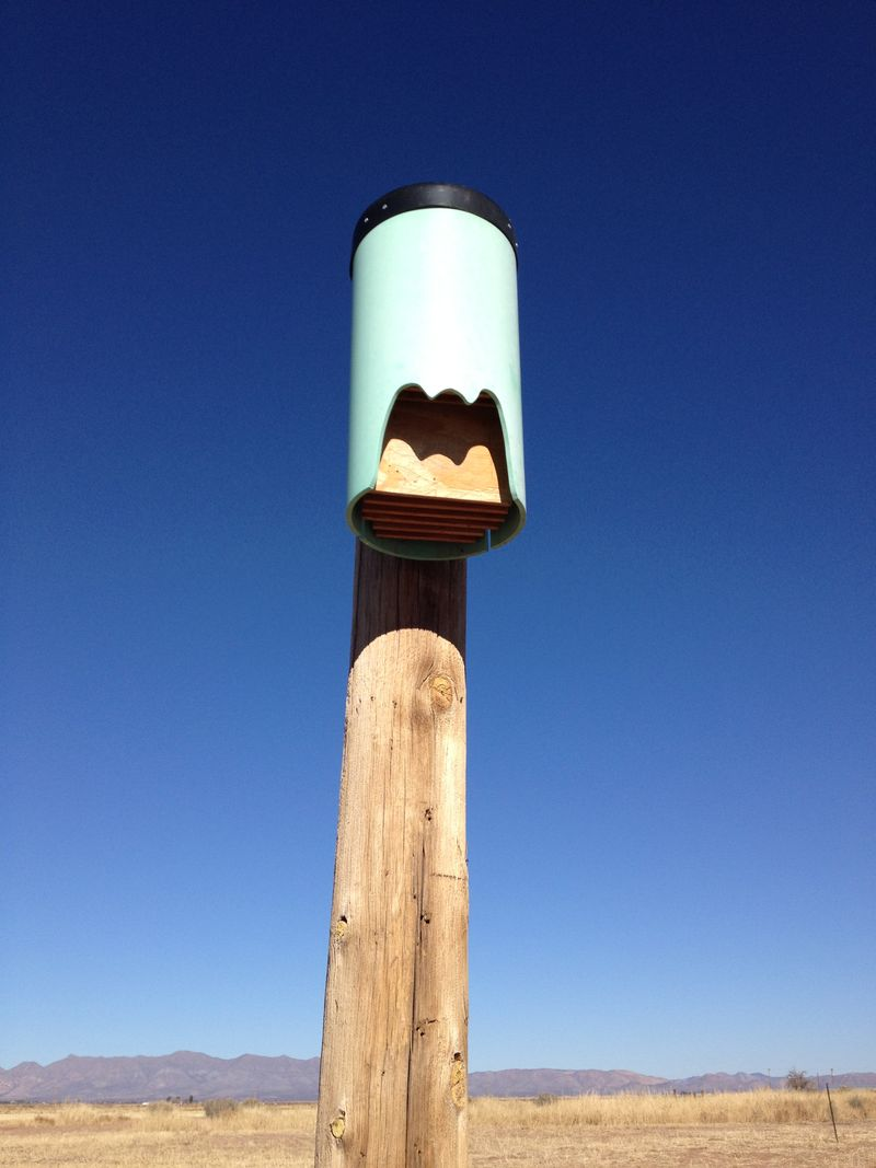 Bat House example
